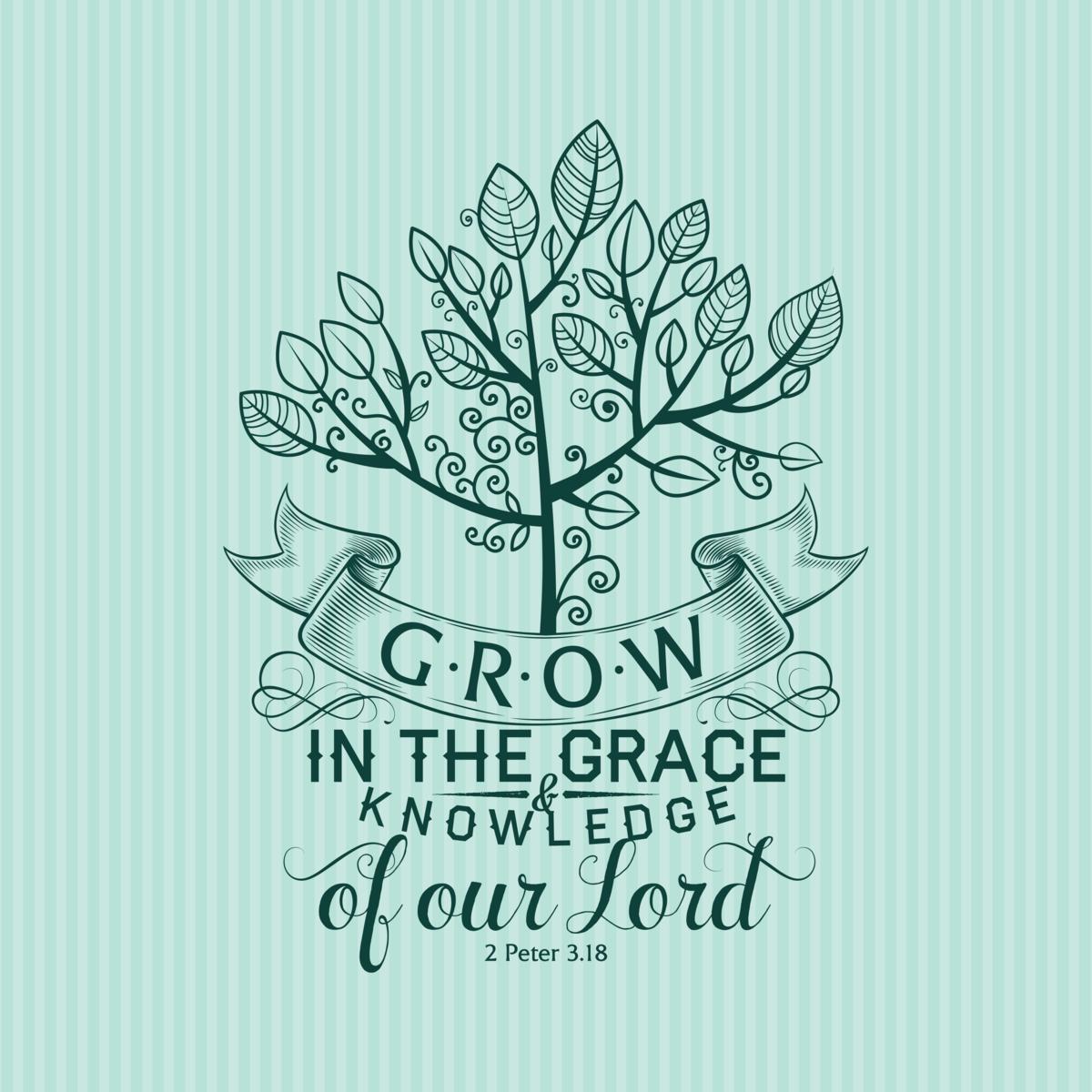 2 Peter 3:18, Grow in Grace